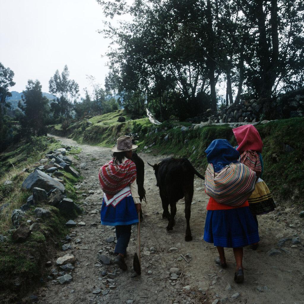 Women walking to their fields