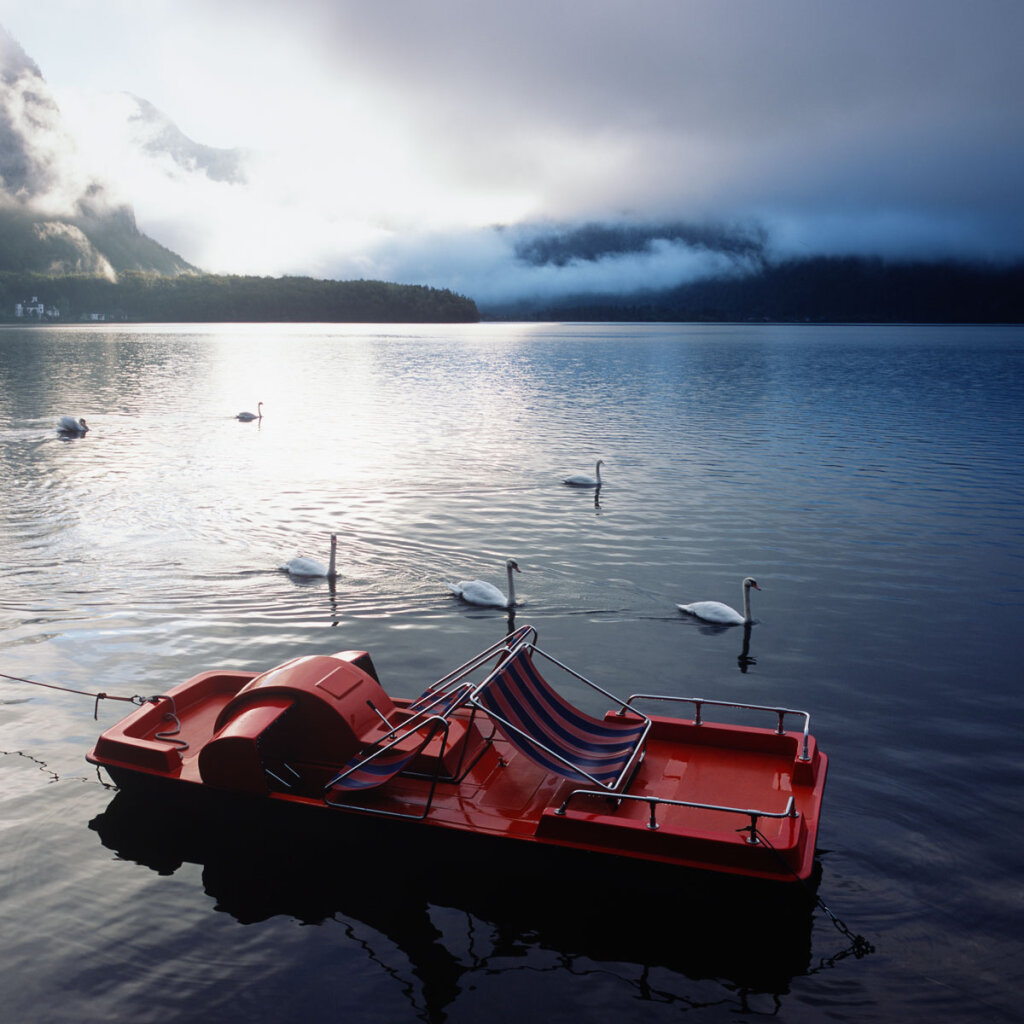 Swans and Pedalo in the morning of  the Hallstätter See