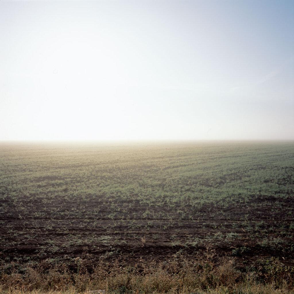 Heavy morning mist near Dolyns'ke