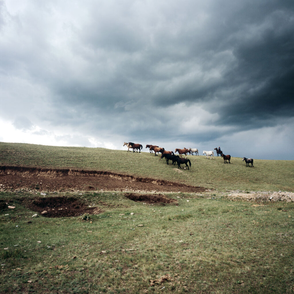 Kirgyz guiding his horses near Otmök