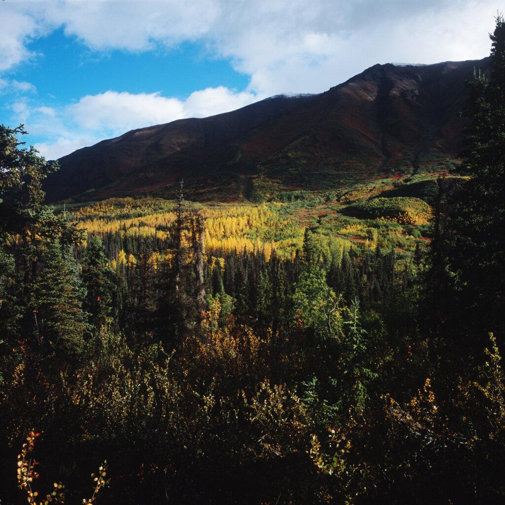2017-08-Yukon-3436-09-1200.jpg